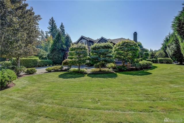 25841 SE 25th Wy, Sammamish, WA 98075 (#1358575) :: Real Estate Solutions Group