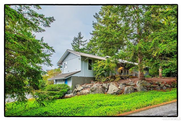 664 Wanapum Dr, La Conner, WA 98257 (#1358824) :: Real Estate Solutions Group