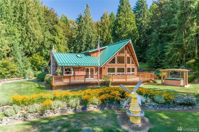 51207 Lillie Dale Rd E, Eatonville, WA 98328 (#1358884) :: Better Homes and Gardens Real Estate McKenzie Group