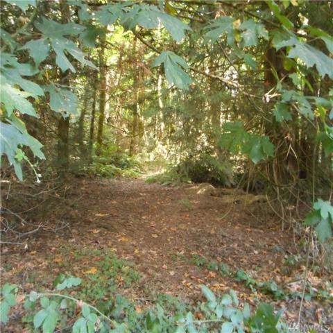 21-XX Martin Ave E, Port Orchard, WA 98366 (#1358911) :: The Robert Ott Group