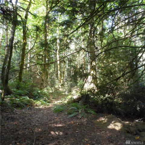 2-XXX Martin Ave E, Port Orchard, WA 98366 (#1358912) :: The Robert Ott Group