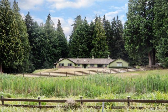 971 Sandy Point Rd, Langley, WA 98260 (#1358997) :: Crutcher Dennis - My Puget Sound Homes