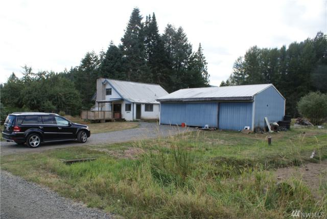 123 Dresher Rd, Mineral, WA 98356 (#1359136) :: Homes on the Sound