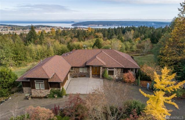 590 Chelsamish Dr, Sequim, WA 98382 (#1359173) :: Keller Williams Realty Greater Seattle