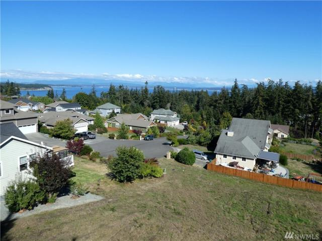 16 Zermatt Ct, Camano Island, WA 98282 (#1359188) :: The Vija Group - Keller Williams Realty