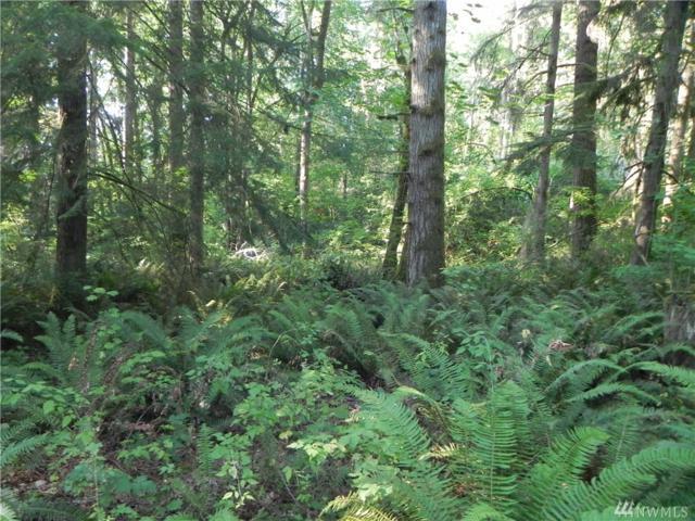3024 Lk Langlios Rd NE, Carnation, WA 98014 (#1359211) :: Keller Williams - Shook Home Group