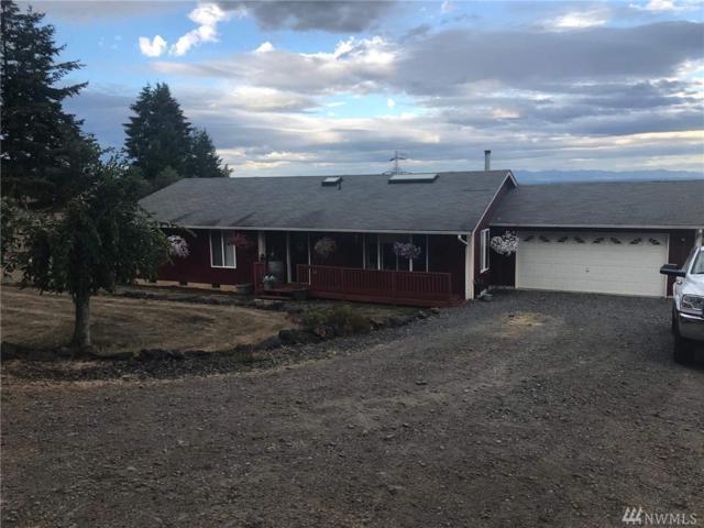 369 Raubuck Rd, Winlock, WA 98596 (#1359600) :: Homes on the Sound