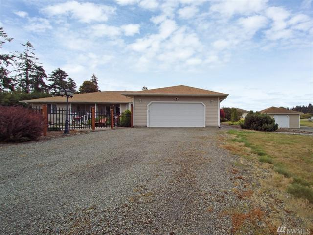 31 Brazil Rd, Sequim, WA 98382 (#1359947) :: Icon Real Estate Group