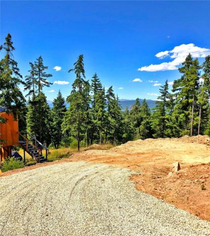 1343 Rocky Mountain Wy, Cle Elum, WA 98922 (#1360192) :: Homes on the Sound