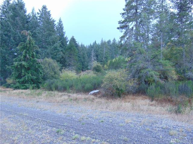 0-6.5Acres Capital Prairie Rd, Shelton, WA 98584 (#1360366) :: Real Estate Solutions Group
