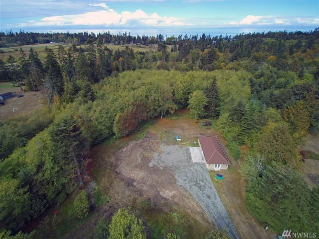 131 Pristine Lane, Port Angeles, WA 98362 (#1360369) :: Real Estate Solutions Group