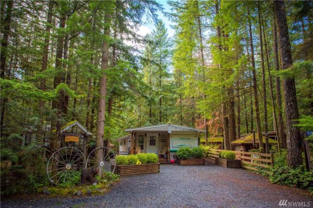 3-2 Wilderness Wy, Deming, WA 98244 (#1360490) :: Homes on the Sound