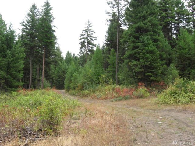 9999 Lundimo Meadows Rd, Curlew, WA 99118 (#1360557) :: Costello Team