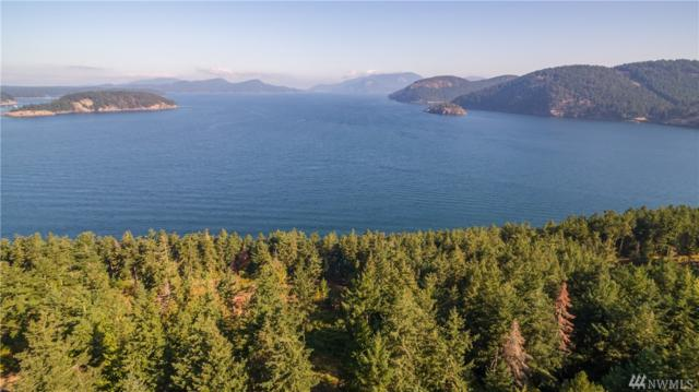 6--T NW Thatcher Pass Rd, Decatur Island, WA 98221 (#1360569) :: Costello Team