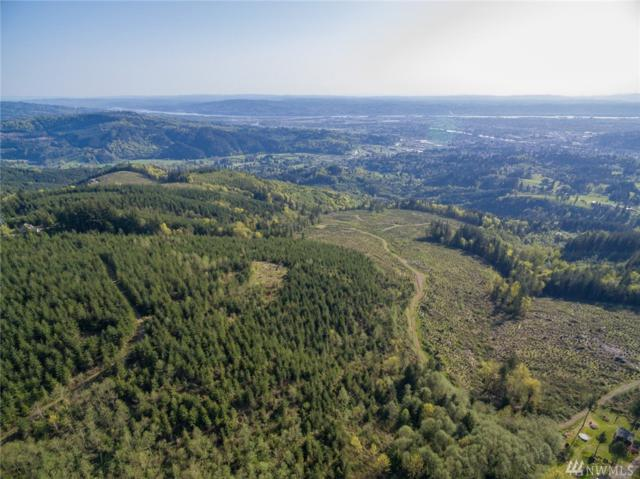 0 Mt. Brynion Rd, Kelso, WA 98626 (#1360762) :: Pickett Street Properties
