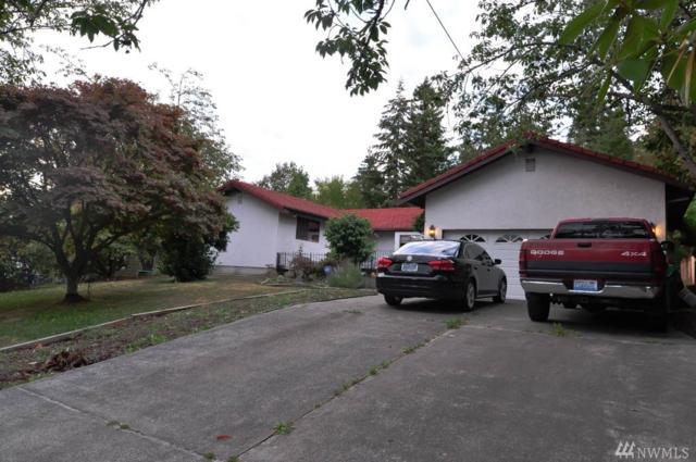 379 Selkirk Dr, Camano Island, WA 98282 (#1360916) :: McAuley Real Estate