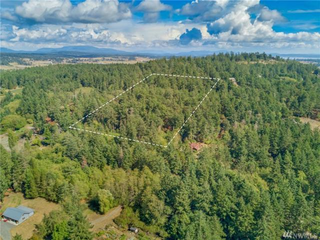 0 Wold Rd, Friday Harbor, WA 98250 (#1361048) :: Homes on the Sound