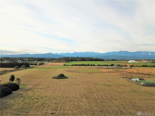 999 Olympic Straits, Sequim, WA 98382 (#1361116) :: Homes on the Sound