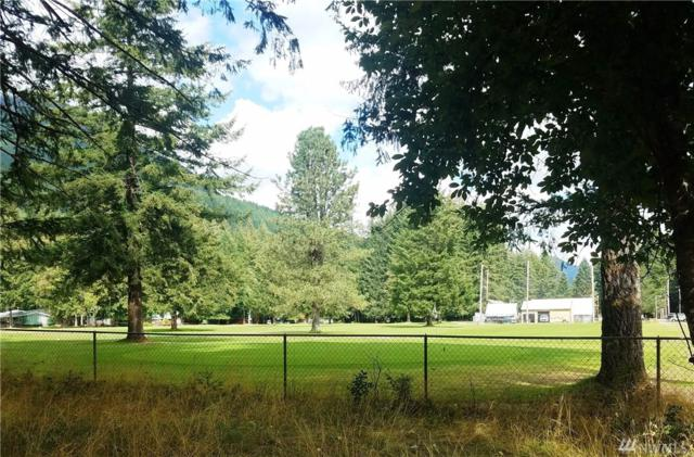 629 Cannon Rd, Packwood, WA 98361 (#1361274) :: Homes on the Sound