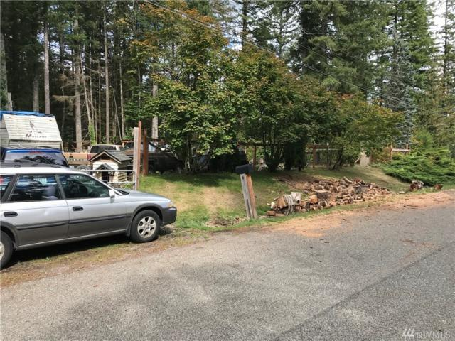 6225 Shamrock Rd, Maple Falls, WA 98266 (#1361280) :: Homes on the Sound