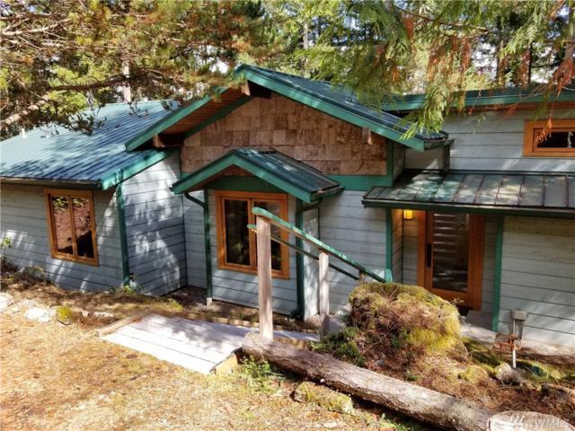 375 Shoreline Lane, Friday Harbor, WA 98250 (#1361296) :: Homes on the Sound