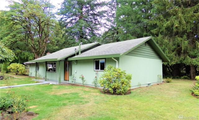 51 W Kamilche Lane, Shelton, WA 98584 (#1361505) :: Homes on the Sound