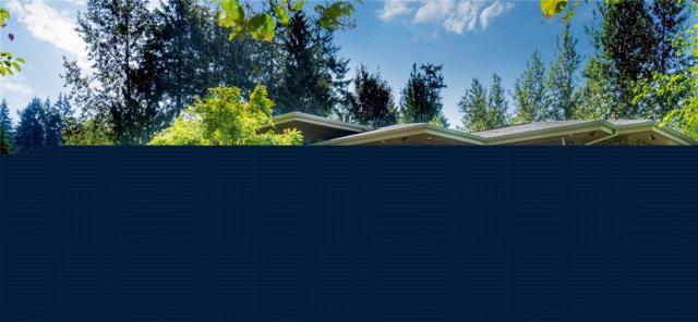 10100 203rd Ave NE, Redmond, WA 98053 (#1361716) :: Homes on the Sound