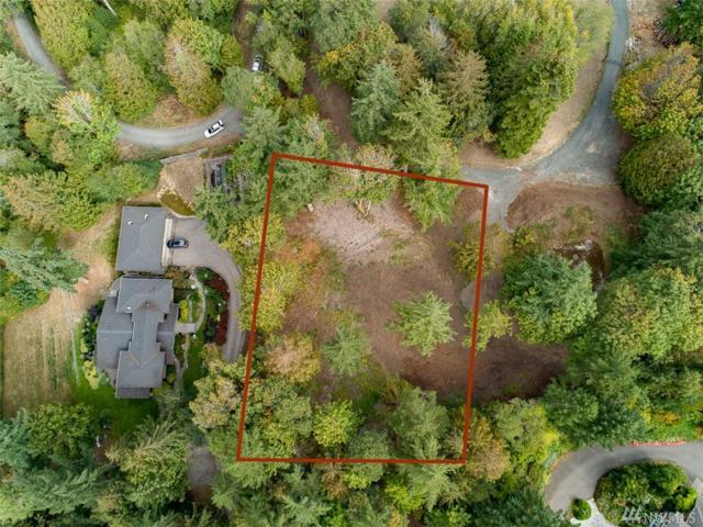 9933 Hilltop Dr NE, Bainbridge Island, WA 98110 (#1361792) :: McAuley Real Estate