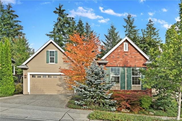 13214 239th Wy NE, Redmond, WA 98053 (#1361837) :: Keller Williams - Shook Home Group