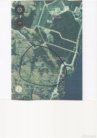 1320 Greens Landing Rd, Manson, WA 98831 (#1362072) :: Chris Cross Real Estate Group