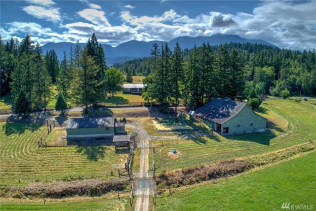 190 Mcinnes Rd, Quilcene, WA 98376 (#1362080) :: Keller Williams Everett
