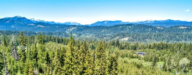 0-Lot 8 Alpineview Dr, Cle Elum, WA 98922 (#1362377) :: Homes on the Sound
