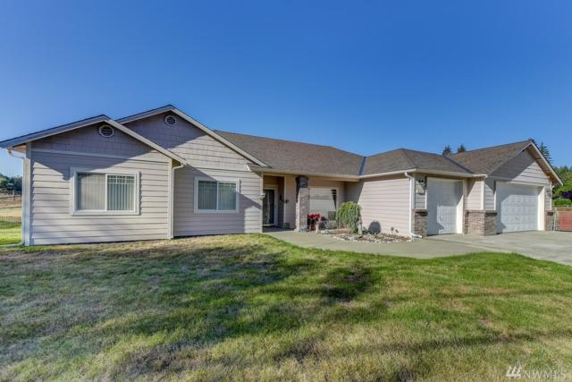 12203 108th St NE, Lake Stevens, WA 98258 (#1362675) :: Better Homes and Gardens Real Estate McKenzie Group