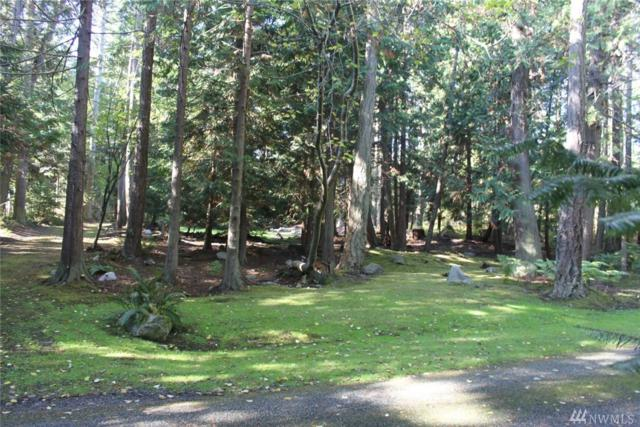 0-XXX Vista Wy, San Juan Island, WA 98250 (#1362727) :: Crutcher Dennis - My Puget Sound Homes
