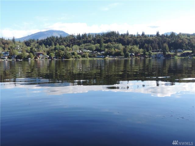 0 W Big Lake Blvd, Mount Vernon, WA 98274 (#1362752) :: Chris Cross Real Estate Group