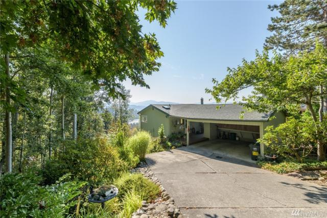 4372 Frances Ave, Bellingham, WA 98226 (#1363196) :: Homes on the Sound