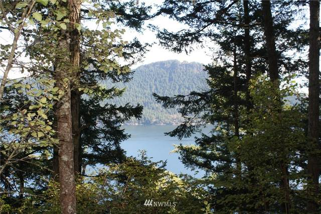 0 Diamond Hill Road, Orcas Island, WA 98245 (#1363415) :: TRI STAR Team | RE/MAX NW
