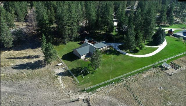 39 Cape Labelle Rd, Tonasket, WA 98855 (#1363714) :: Real Estate Solutions Group