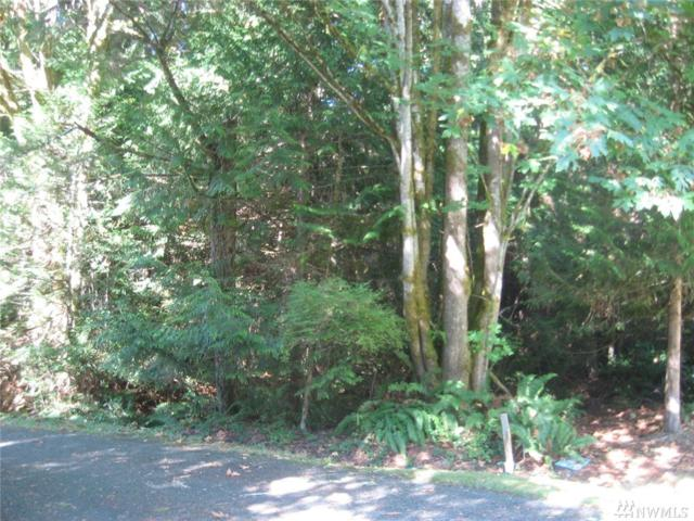 0 Yawl Lane, Port Ludlow, WA 98365 (#1363896) :: Ben Kinney Real Estate Team