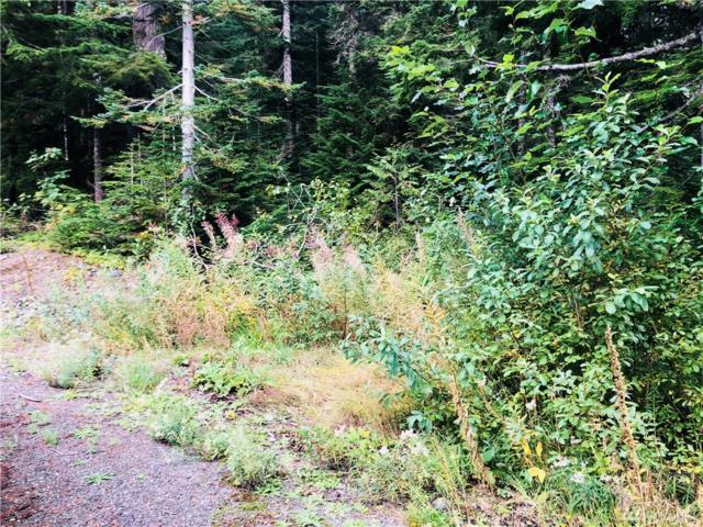 0-Lot 9 Snoqualmie Dr, Snoqualmie Pass, WA 98068 (#1363901) :: The Home Experience Group Powered by Keller Williams