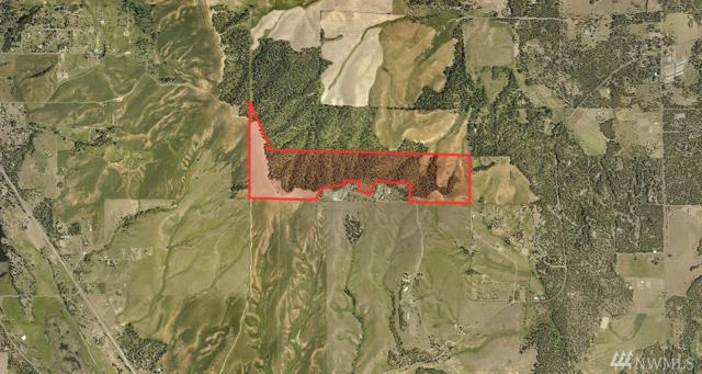 0 S Cheney St, Spokane, WA 99004 (#1364396) :: Homes on the Sound