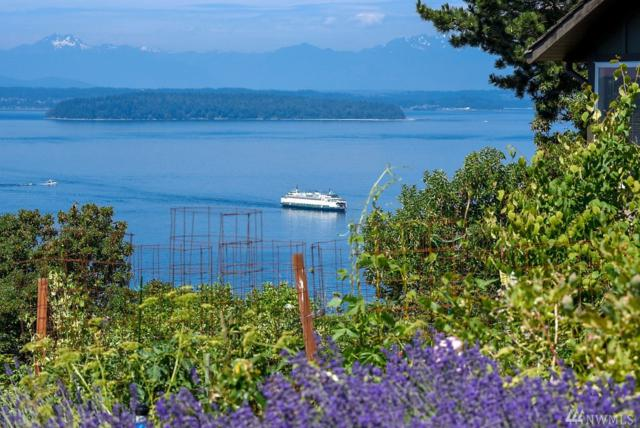10245 Marine View Dr SW, Seattle, WA 98146 (#1364615) :: Beach & Blvd Real Estate Group