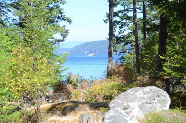 375 Vista Wy, San Juan Island, WA 98250 (#1364705) :: Kimberly Gartland Group