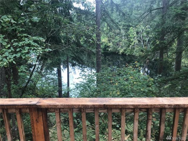 22406 Blue Lake Ct SE, Yelm, WA 98597 (#1364860) :: The Vija Group - Keller Williams Realty