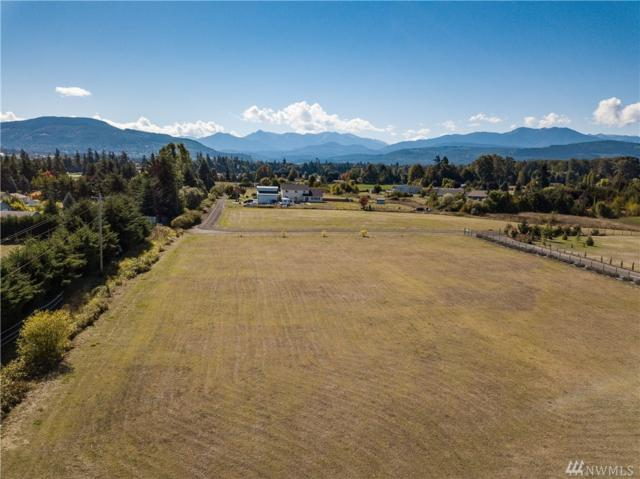 9999 Hendrickson Rd, Sequim, WA 98382 (#1365092) :: KW North Seattle