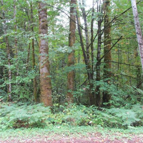 7516 Miller Wy, Glacier, WA 98244 (#1365247) :: McAuley Real Estate