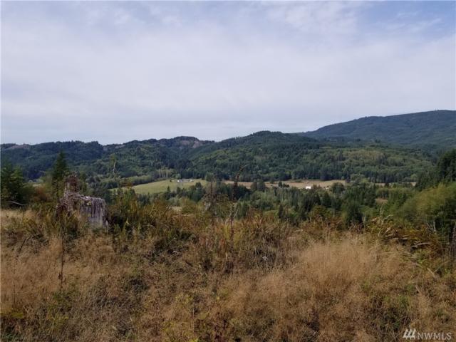0 Elochoman Valley Rd, Cathlamet, WA 98612 (#1365676) :: The Vija Group - Keller Williams Realty