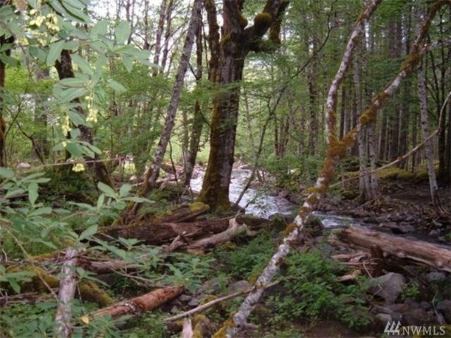 0 Lake Creek Dr, Packwood, WA 98361 (#1366067) :: Crutcher Dennis - My Puget Sound Homes