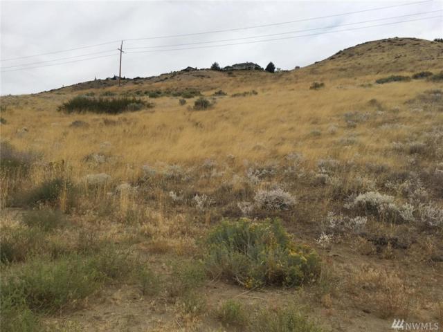 0-NNA Catalina Dr, East Wenatchee, WA 98802 (#1366120) :: Nick McLean Real Estate Group