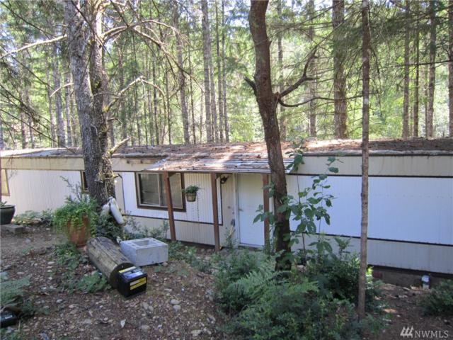 351 NE Tahuya Blvd, Tahuya, WA 98588 (#1366170) :: Alchemy Real Estate